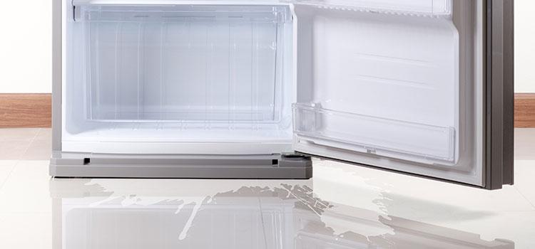A leaky fridge